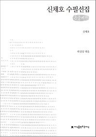신채호 수필선집(큰글씨책)