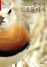 한국의 도요물떼새