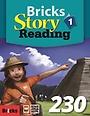 Bricks Story Reading 230 (1)